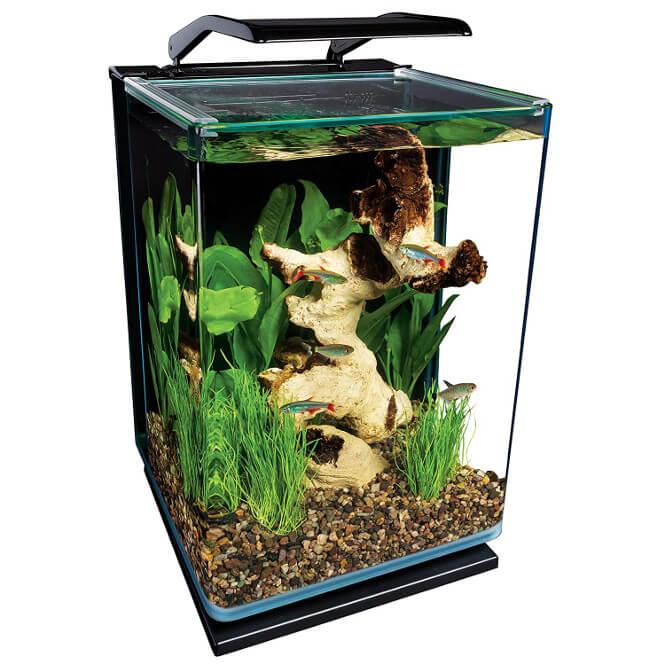 marineland portrait glass aquarium kit