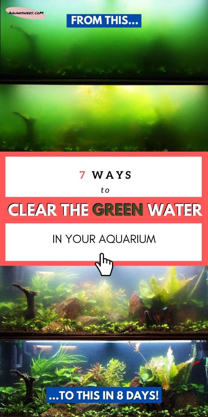 green aquarium water poster