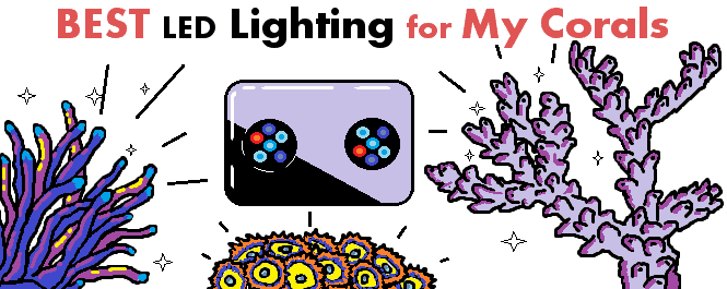 reef leds for corals
