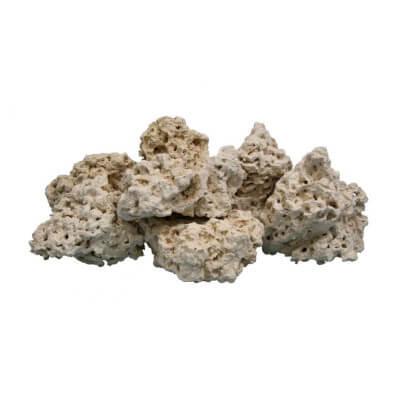AWW0888 atlantic coral rock