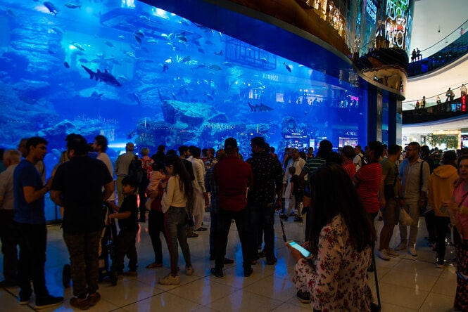 Crowd in front of a large tank in Dubai's Aquarium & Underwater Zoo.