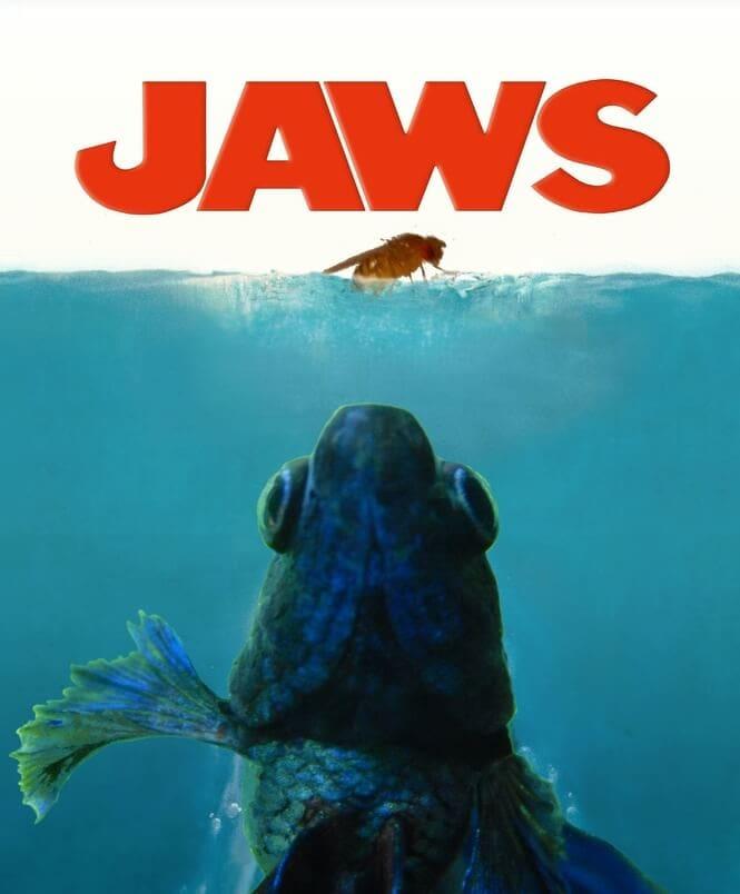 betta fish jaws poster