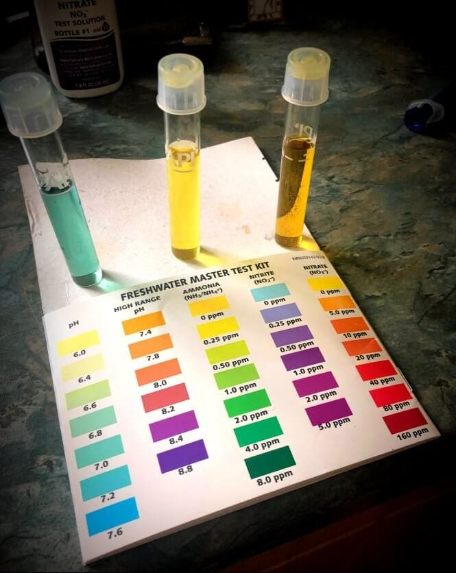 PH, ammonia, nitrite and nitrate test kit image.