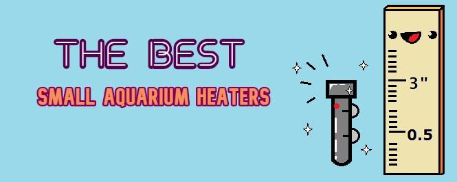 best small aquarium heater header