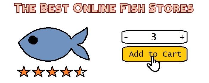 best online fish store header