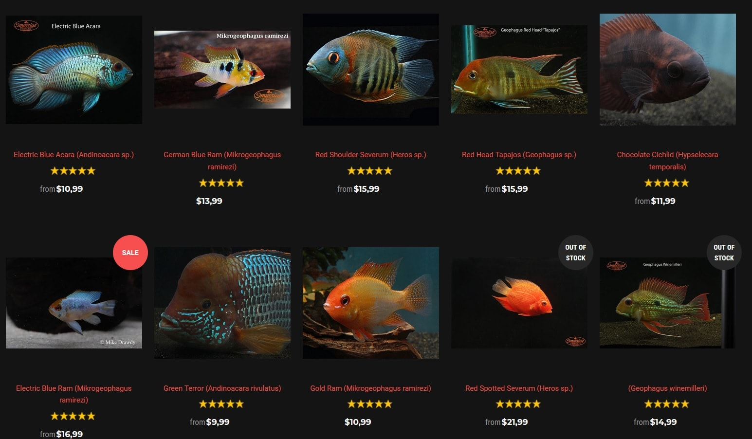 imperialtropicals cichlid selections