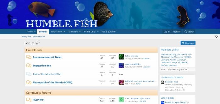 humblefish homepage