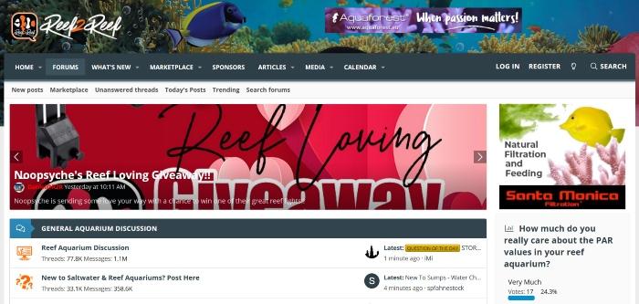reef2reef homepage
