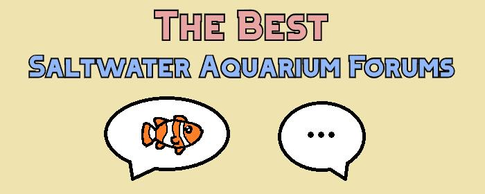 saltwater aquarium forum header