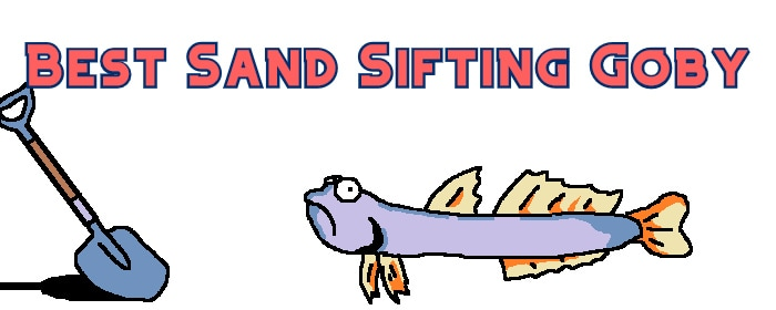 sand sifting goby header